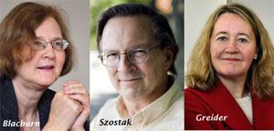 Premios Nobel de Fisiología y Medicina 2009
