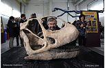 Turiasaurus - Vanguardia de la Ciencia - cienciaes.com
