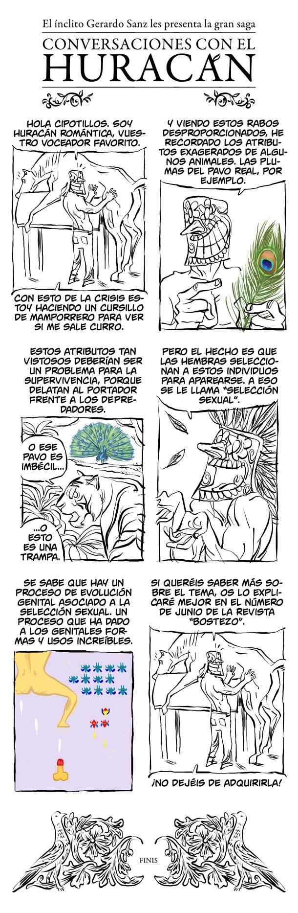 Seleccion sexual - Conversaciones con el Huracan - cienciaes.com
