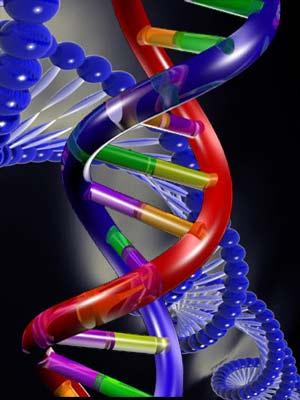 Nuevo ADN - Quilo de Ciencia podcast - cienciaes.com