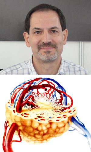 Jorge Laborda - Hablando con Científicos - Cienciaes.com