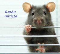 Ratón  autista - Quilo de Ciencia - Cienciaes.com