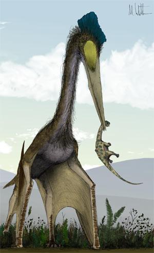 Hatzegopteryx - Zoo de Fósiles