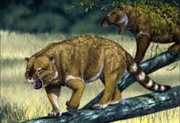 Leon marsupial - Zoo de Fósiles - Cienciaes.com