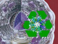 Reciclaje molecular - Quilo de Ciencia podcast - Cinciaes.com