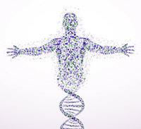 Pseudogenes - Quilo de Ciencia podcast - Cienciaes.com