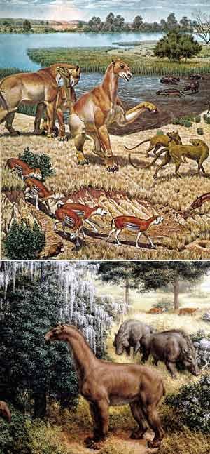Sabana Norteamericana - Zoo de fósiles podcast - Cienciaes.com