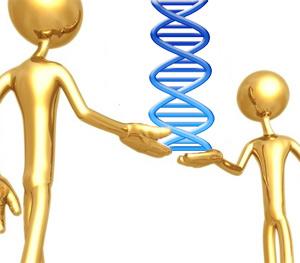 Gen no tan egoísta - Quilo de Ciencia podcast - Cienciaes.com