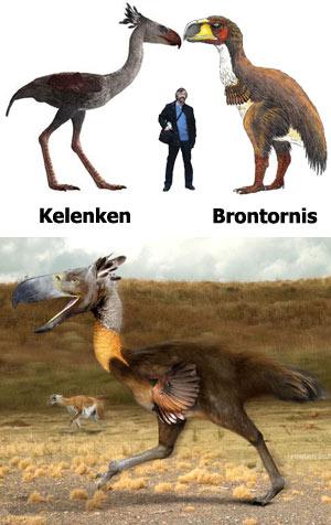 Aves del terror - Zoo de Fósiles podcast - Cienciaes.com