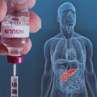 Nueva hormona antidiabetes - Quilo de Ciencia podcast - Cienciaes.com