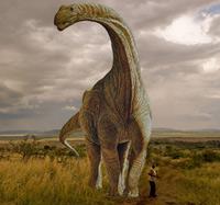 Argentinosaurus - Zoo de fósiles podcast - Cienciaes.com