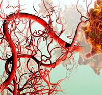 Azúcar para la circulación - Quilo de Ciencia podcast - Cienciaes.com