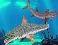 Tiburones con muchos dientes - Zoo de Fósiles podcast - Cienciaes.com