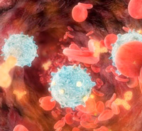La red inmune - Quilo de Ciencia podcast - Cienciaes.com