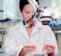 Células madre bajo estrés - Podcast Quilo de Ciencia - Cienciaes.com