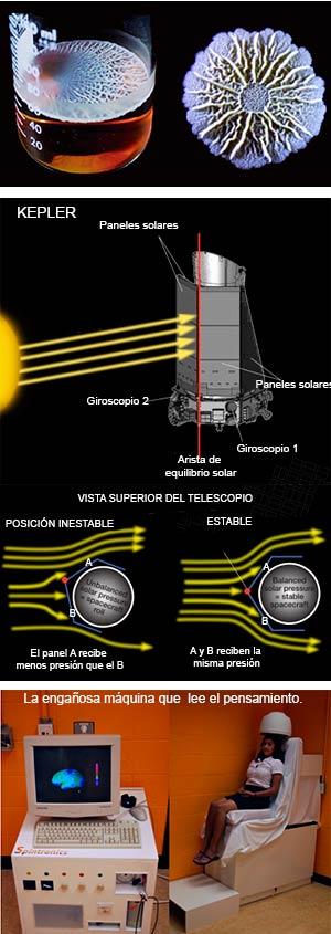 Biofilms, Kepler y neurólogos engañados.