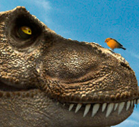Talla y evolución de los dinosaurios. Podcast Quilo de Ciencia - Cienciaes.com