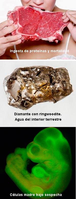 Proteinas, diamantes y fraude científicos - Ciencia Fresca podcast - Cienciaes.com