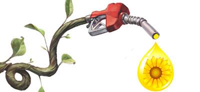 Biocombustibles - Hablando con Científicos podcast - Cienciaes.com