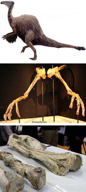 Deinocheirus, la mano terrible. Zoo de Fósiles podcast . CienciaEs.com
