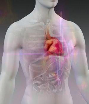 Genes y enfermedad cardiovascular - Podcast Quilo de Ciencia - CienciaEs.com