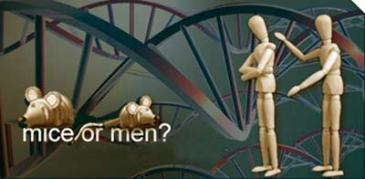Ratones y humanos - Podcast Ciencia Fresca - CienciaEs.com