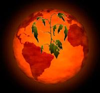 Los años más calurosos. La Tierra limitada. Veneno a la insulina. Ciencia Fresca podcast - CienciaEs.com