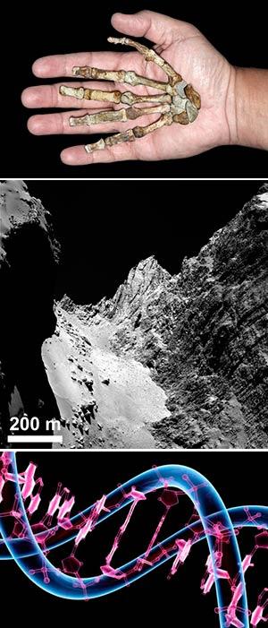 Manos homínidas. Cuentos de Rosetta. Gen malinterpretado. - Ciencia Fresca Podcast - CienciaEs.com