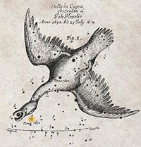 Marañas de ARN - Ciencia Fresca Podcast - CienciaEs.com