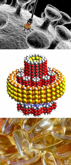 Quilo de Ciencia - nanocapsulas - cienciaes.com