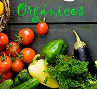 Alimentos orgánicos - Cierta Ciencia podcast - CienciaEs.com