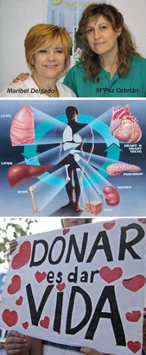 Trasplantes de órganos - Hablando con Científicos