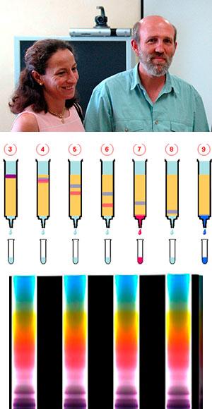 Cromatografía contra el dopaje.  Hablando con Científicos podcast - CienciaEs-com