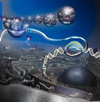 Vida ¿De qué estamos hechos?  - Podcast Ciencia EXtrema - CienciaEs.com
