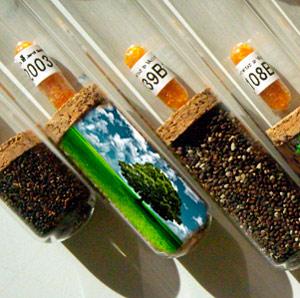 Bancos de semillas - Hablando con Científicos Podcast - CienciaEs.com