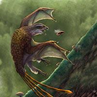 Scateriopterigidos - Zoo de fósiles  podcast - CienciaEs.com
