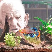Envejecimiento, magnetismo y mitocondrias - Ciencia Fresca Podcast - CienciaEs.com