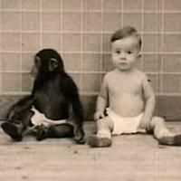 Lo que nos hizo humanos - Cierta Ciencia podcast - CienciaEs.com