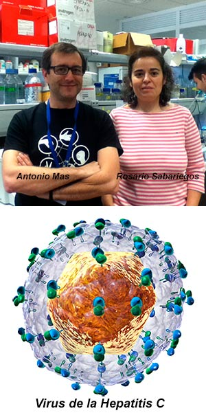 Las innumerables caras del virus.- Hablando con Científicos - Cienciaes.com