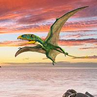 Dimorphodon - Podcast Zoo de Fósiles - CienciaEs.com