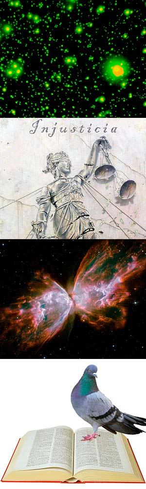 La injusticia no importa. Las alas de la mariposa cósmica. - Podcast Ciencia Fresca - CienciaEs.com