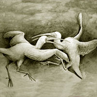 Ibis Jamaicano - Podcast Zoo de Fósiles - CienciaEs.com