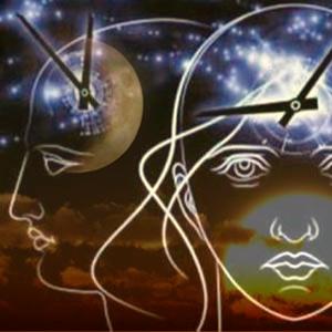 Defensas circadianas - Quilo de Ciencia - CienciaEs.com