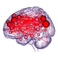 Cerebro evaluador _ Quilo de Ciencia podcast - CienciaEs.com