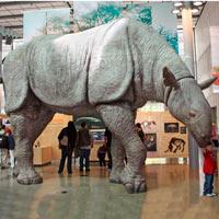 Paraceratherium transouralicum - Podcast Zoo de Fósiles - CienciaEs.com