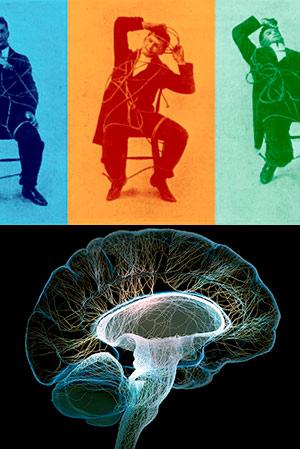 El cerebro influye en el cuerpo - Cierta Ciencia podcast - CienciaEs.com
