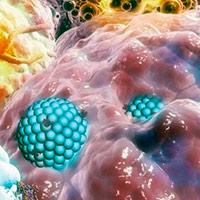 Viaje al centro de la célula - Cierta Ciencia podcast - CienciaEs.com