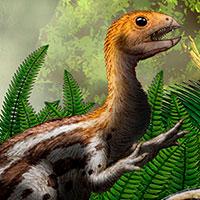 Limusaurus, el dinosaurio del fango - Zoo de fósiles - CienciaEs.com