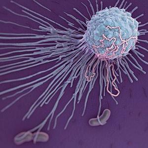 El mordisco del macrófago - Quilo de Ciencia Podcast - CienciaEs.com