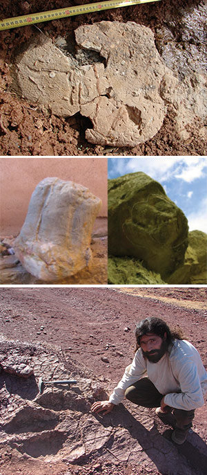 Huellas de dinosaurio - Hablando con Científicos podcast - CienciaEs.com